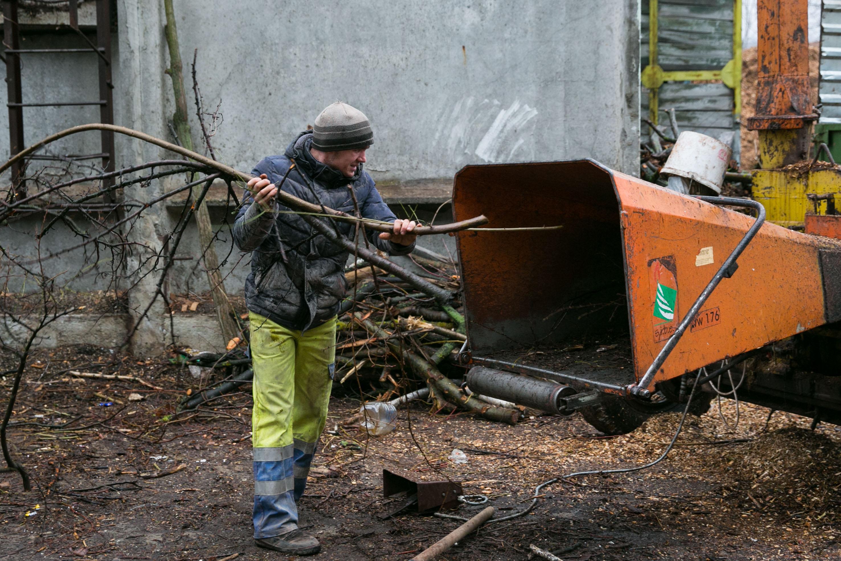 Gunoiul lemnos din Moldova, transformat în bani cu ajutorul